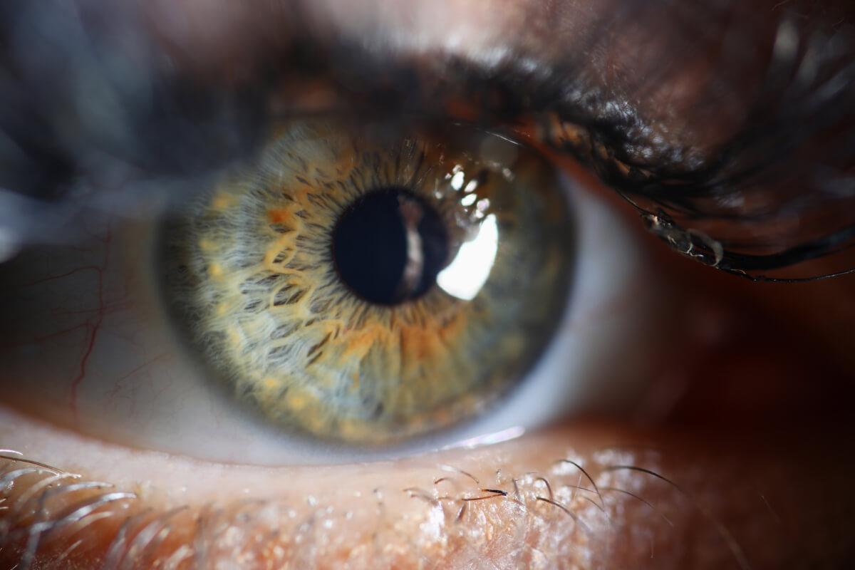 Oko - zbliżenie. Badanie OCT oka - gdzie w Polsce można je wykonać