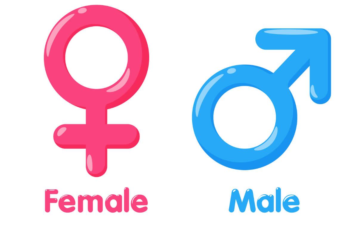Male -female symbol. Jak wygląda zmiana płci? - Cały proces krok po kroku